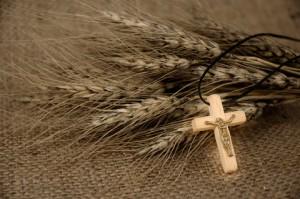 Christian Cross And Wheat